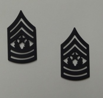 Command Sergeant Major, Pin-On Subd.