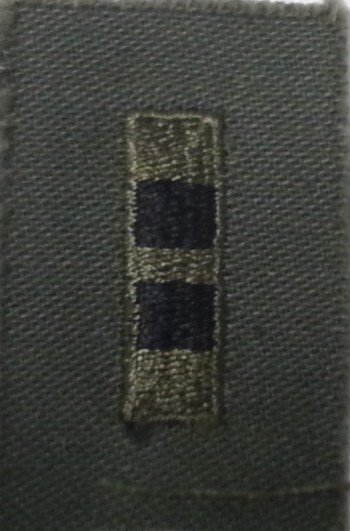Warrant Officer 2 (WO2), Sew-On Subd