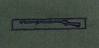Expert Infantryman's Badge, EIB, Subdued