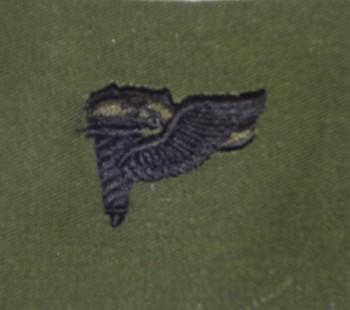 Pathfinder Qualification Badge. Subdued.