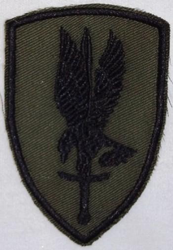 1st. Aviation Brigade, Subd. Twill